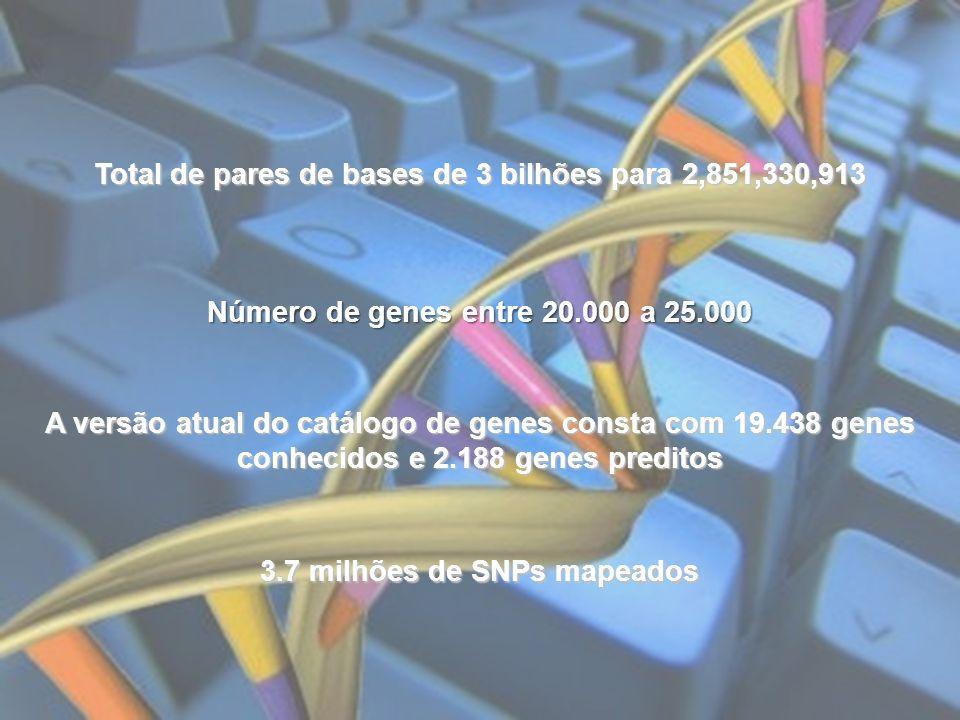 Total de pares de bases de 3 bilhões para 2,851,330,913 Número de genes entre 20.000 a 25.000 3.7 milhões de SNPs mapeados A versão atual do catálogo