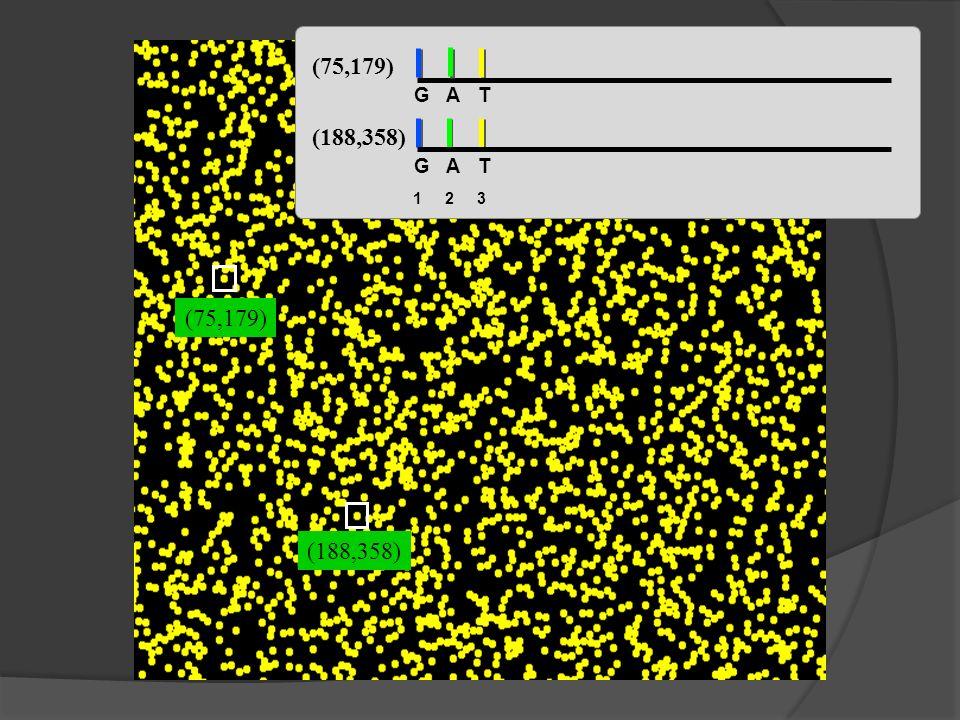 (75,179) (188,358) (75,179) (188,358) GAT GAT 123