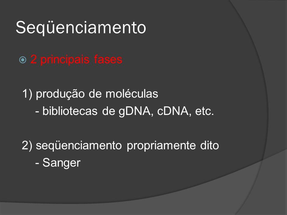 Seqüenciamento 2 principais fases 1) produção de moléculas - bibliotecas de gDNA, cDNA, etc.