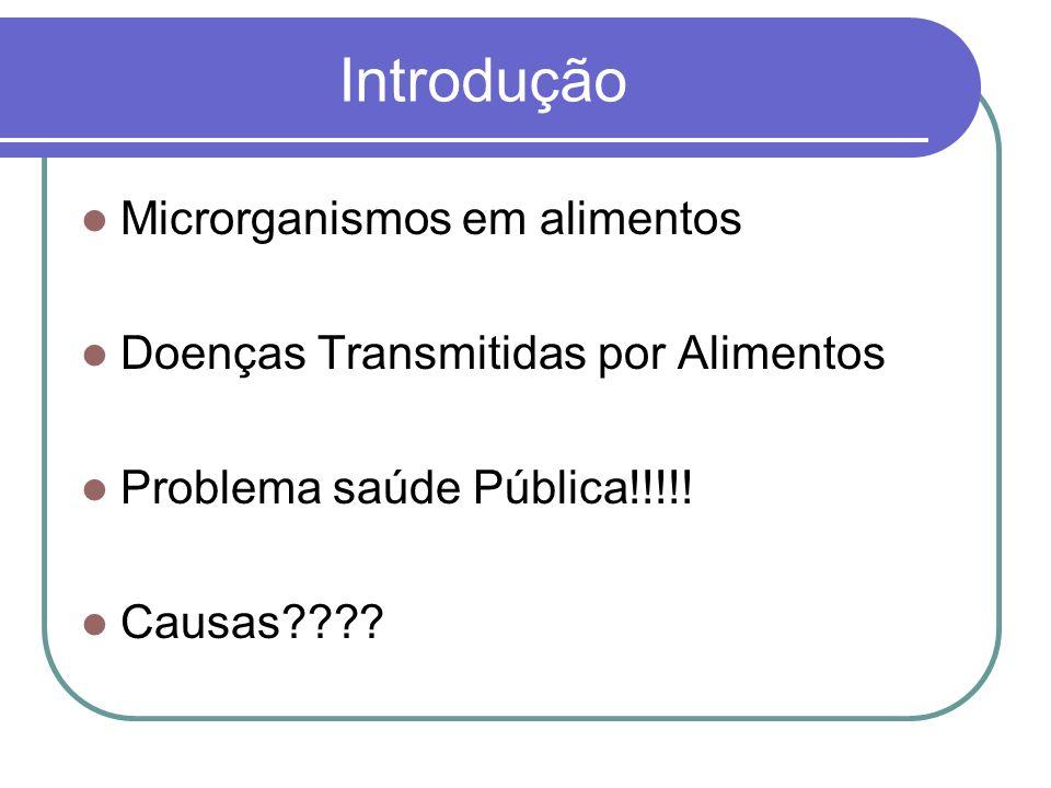 Introdução Microrganismos em alimentos Doenças Transmitidas por Alimentos Problema saúde Pública!!!!! Causas????