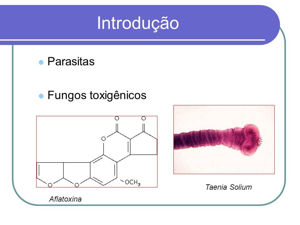 Introdução Parasitas Fungos toxigênicos Aflatoxina Taenia Solium
