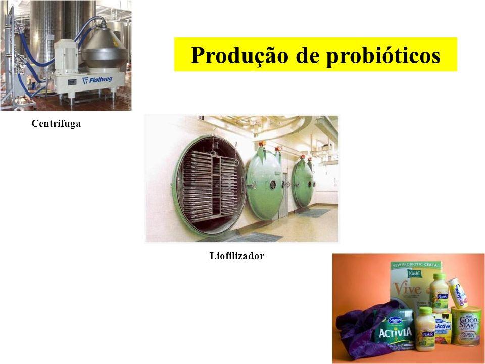 Produção de probióticos Cultivo Conservação da cepa Scale up
