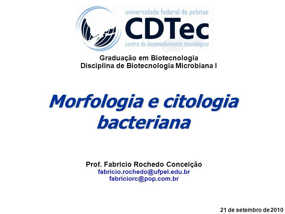 Prof. Fabricio Rochedo Conceição fabricio.rochedo@ufpel.edu.br fabriciorc@pop.com.br Graduação em Biotecnologia Disciplina de Biotecnologia Microbiana