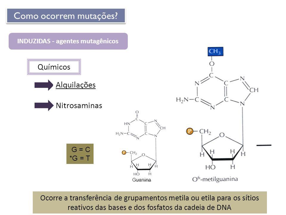Químicos INDUZIDAS - agentes mutagênicos Como ocorrem mutações? Nitrosaminas Ocorre a transferência de grupamentos metila ou etila para os sítios reat