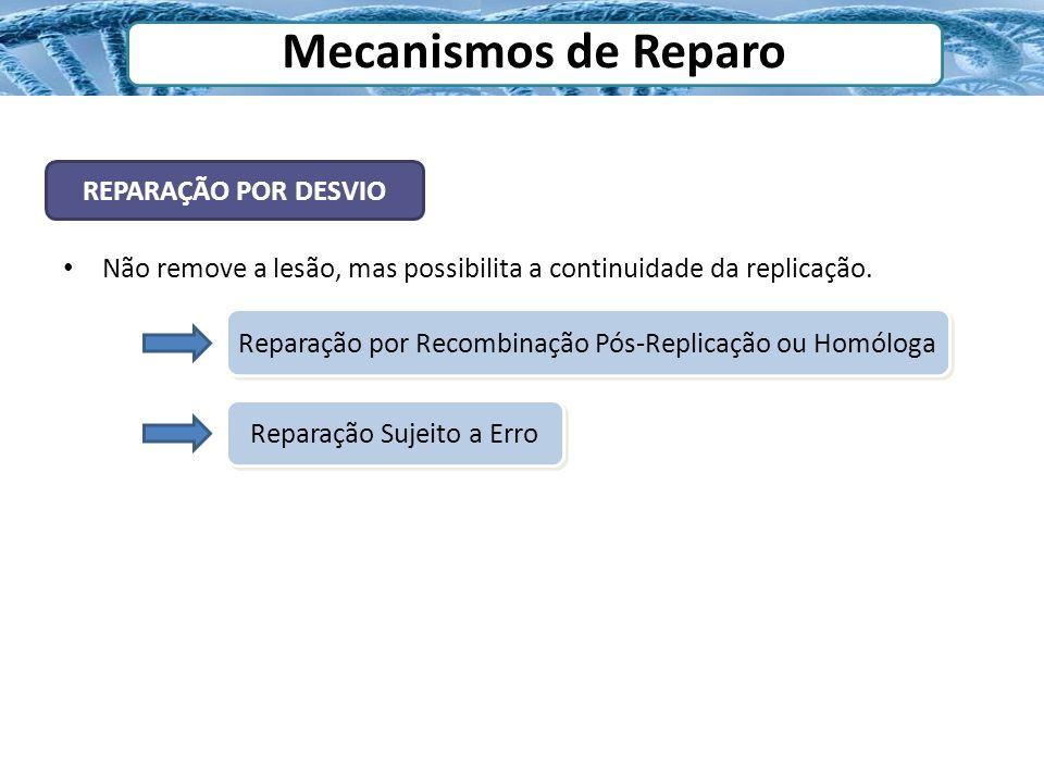 Mecanismos de Reparo REPARAÇÃO POR DESVIO Não remove a lesão, mas possibilita a continuidade da replicação. Reparação por Recombinação Pós-Replicação