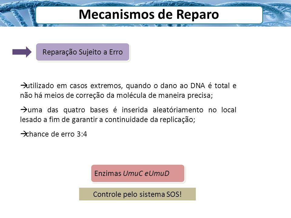 Mecanismos de Reparo Reparação Sujeito a Erro Enzimas UmuC eUmuD Controle pelo sistema SOS! utilizado em casos extremos, quando o dano ao DNA é total