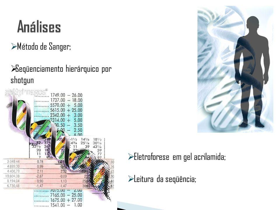 Método de Sanger; Seqüenciamento hierárquico por shotgun Eletroforese em gel acrilamida; Leitura da seqüência;