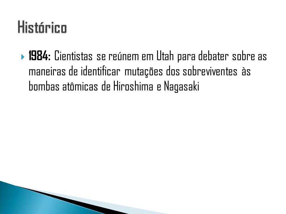 Este processo tem por objetivo complementar as análises obtidas pelo WSA, e consiste na divisão do genoma e grande regiões.
