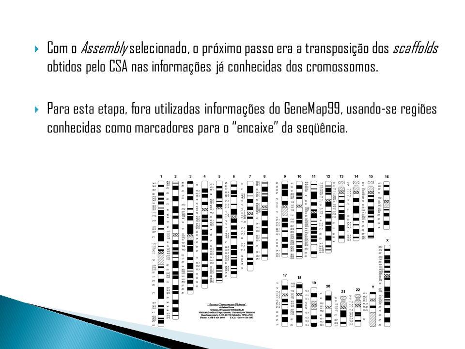 Com o Assembly selecionado, o próximo passo era a transposição dos scaffolds obtidos pelo CSA nas informações já conhecidas dos cromossomos. Para esta