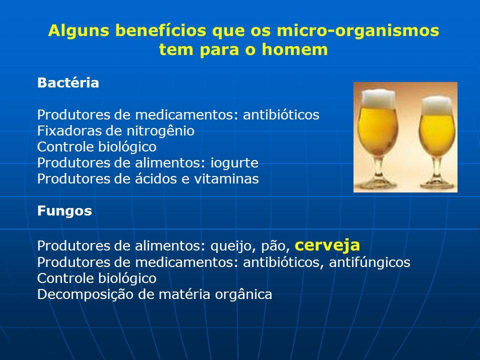 Alguns benefícios que os micro-organismos tem para o homem Bactéria Produtores de medicamentos: antibióticos Fixadoras de nitrogênio Controle biológico Produtores de alimentos: iogurte Produtores de ácidos e vitaminas Fungos Produtores de alimentos: queijo, pão, cerveja Produtores de medicamentos: antibióticos, antifúngicos Controle biológico Decomposição de matéria orgânica