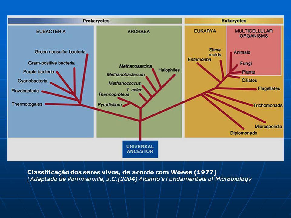 Classificação dos seres vivos, de acordo com Woese (1977) (Adaptado de Pommerville, J.C.(2004) Alcamo's Fundamentals of Microbiology