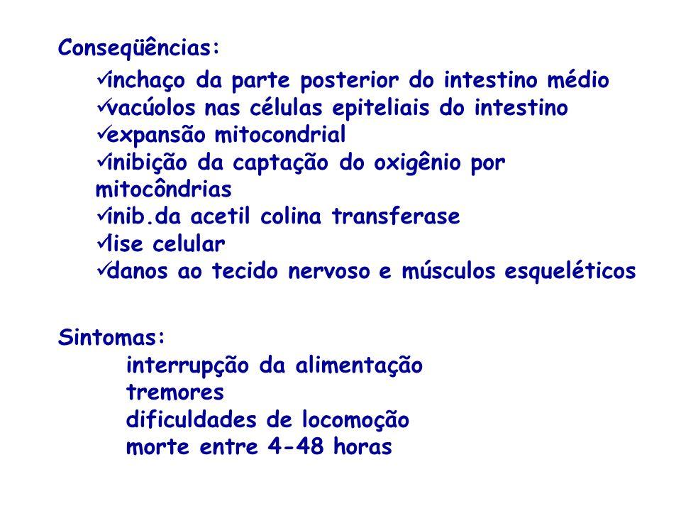 Conseqüências: inchaço da parte posterior do intestino médio vacúolos nas células epiteliais do intestino expansão mitocondrial inibição da captação d