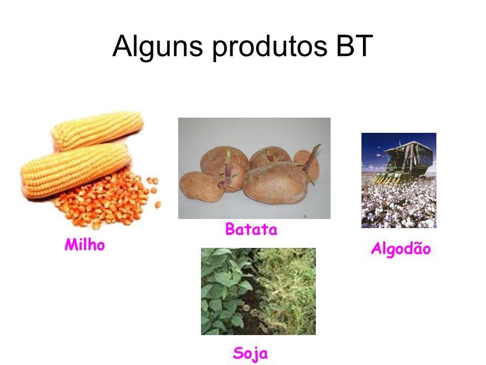 Alguns produtos BT Milho Batata Soja Algodão