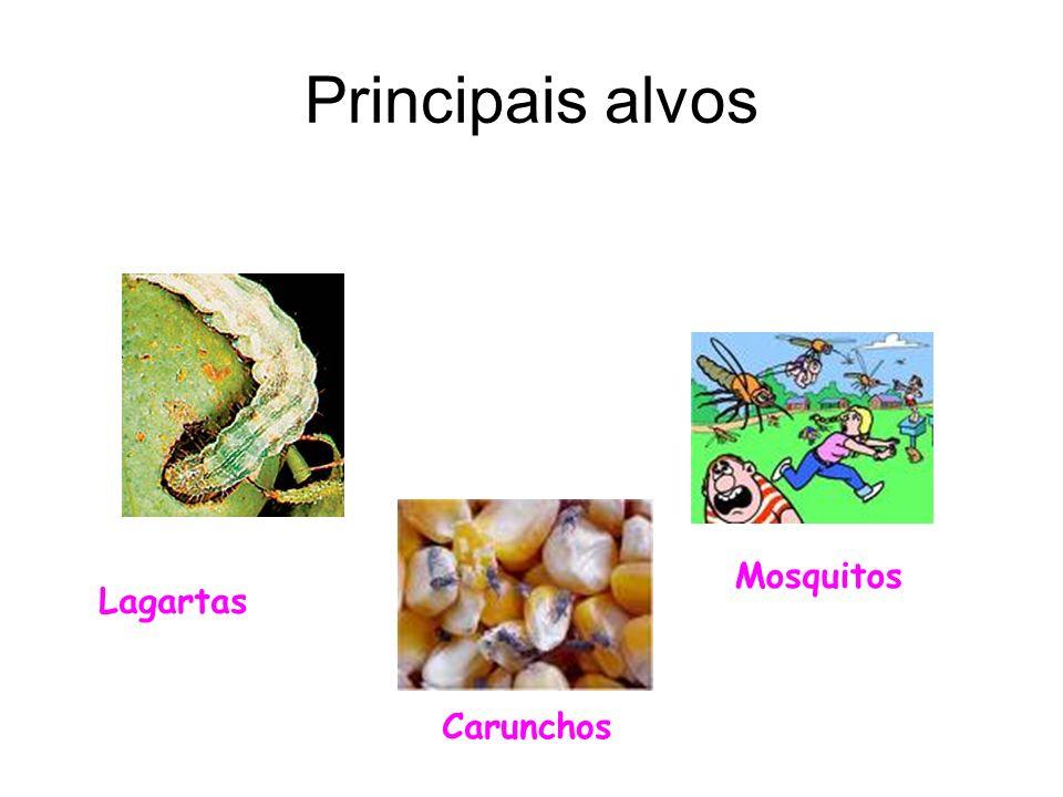 Principais alvos Lagartas Mosquitos Carunchos