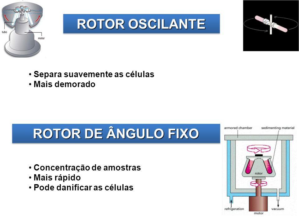 ROTOR DE ÂNGULO FIXO ROTOR OSCILANTE Concentração de amostras Mais rápido Pode danificar as células Separa suavemente as células Mais demorado