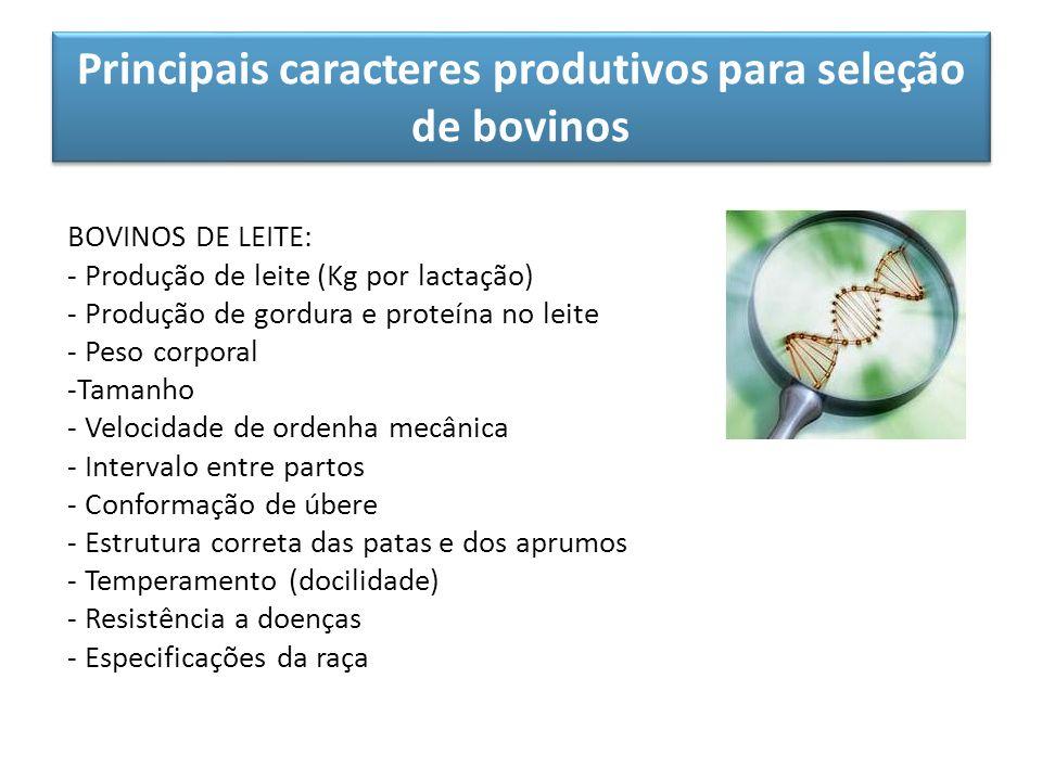 Principais caracteres produtivos para seleção de bovinos BOVINOS DE LEITE: - Produção de leite (Kg por lactação) - Produção de gordura e proteína no l