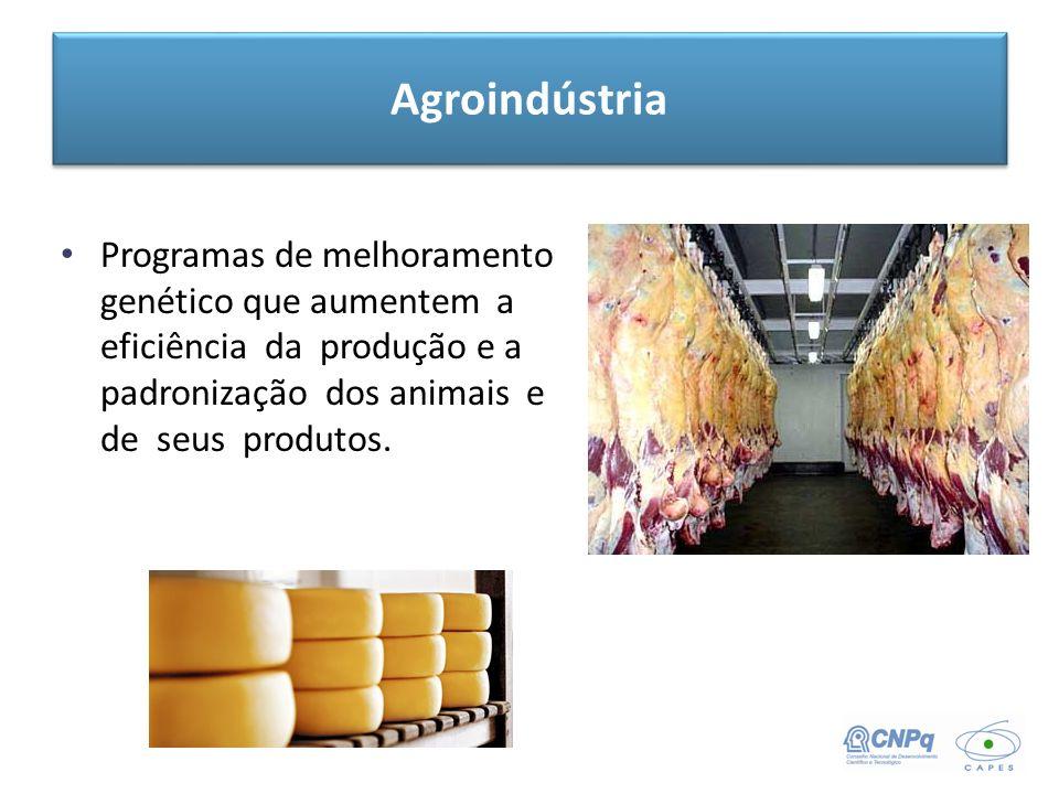 Programas de melhoramento genético que aumentem a eficiência da produção e a padronização dos animais e de seus produtos. Agroindústria