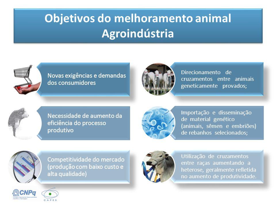 Objetivos do melhoramento animal Agroindústria Direcionamento de cruzamentos entre animais geneticamente provados; Importação e disseminação de materi