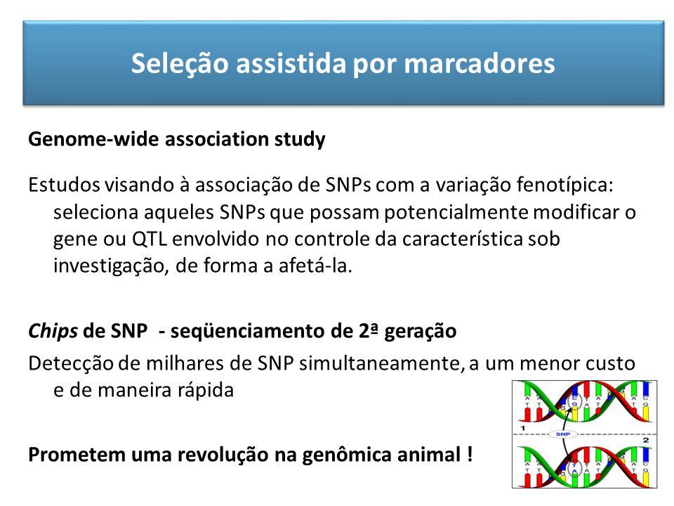 Seleção assistida por marcadores Genome-wide association study Estudos visando à associação de SNPs com a variação fenotípica: seleciona aqueles SNPs