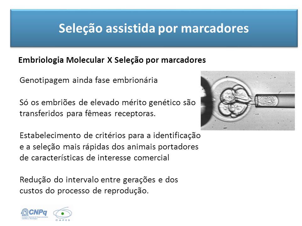 Seleção assistida por marcadores Embriologia Molecular X Seleção por marcadores Genotipagem ainda fase embrionária Só os embriões de elevado mérito ge