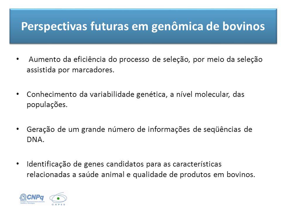 Perspectivas futuras em genômica de bovinos Aumento da eficiência do processo de seleção, por meio da seleção assistida por marcadores. Conhecimento d