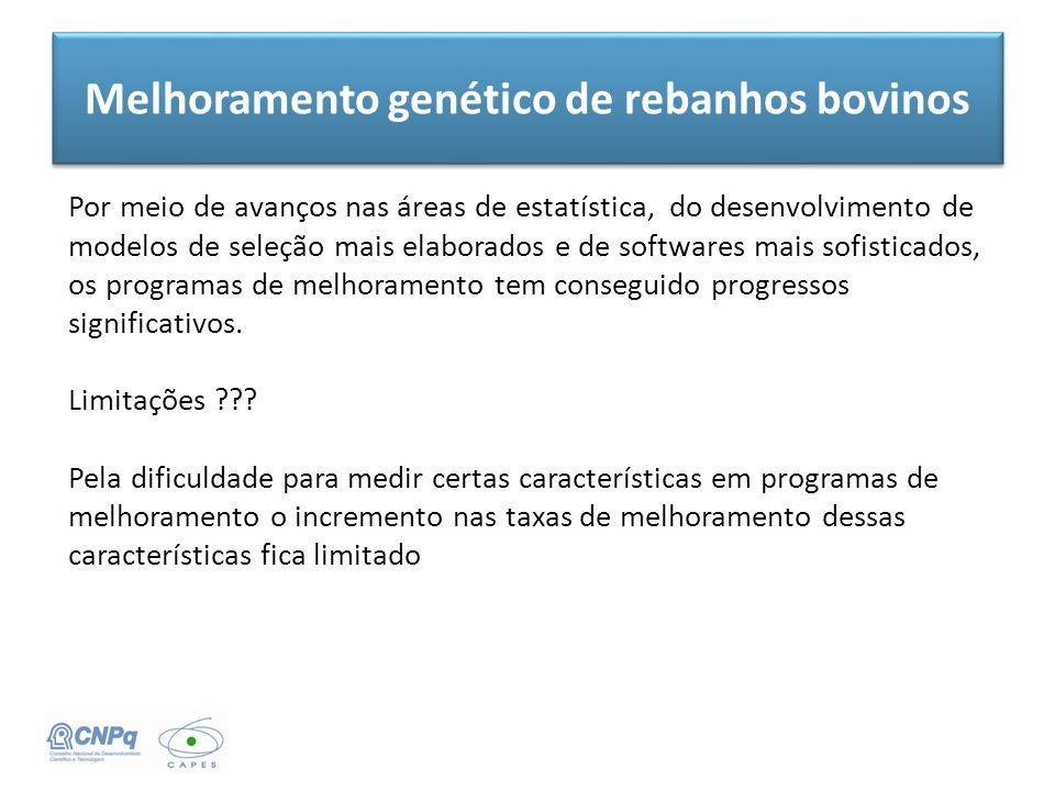 Melhoramento genético de rebanhos bovinos Por meio de avanços nas áreas de estatística, do desenvolvimento de modelos de seleção mais elaborados e de