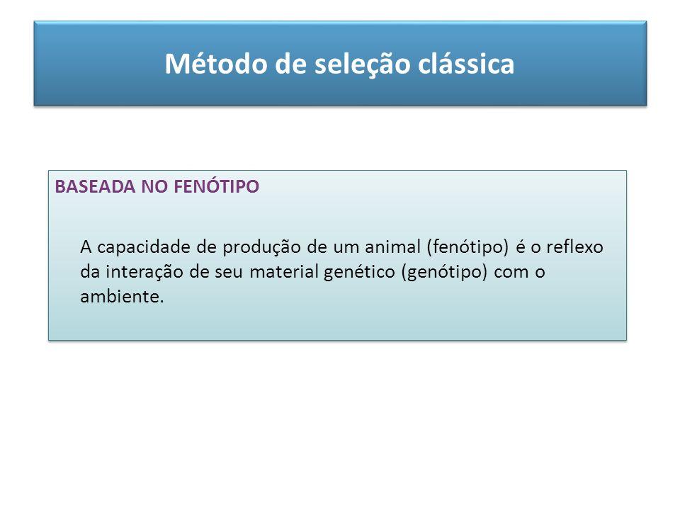 Método de seleção clássica BASEADA NO FENÓTIPO A capacidade de produção de um animal (fenótipo) é o reflexo da interação de seu material genético (gen