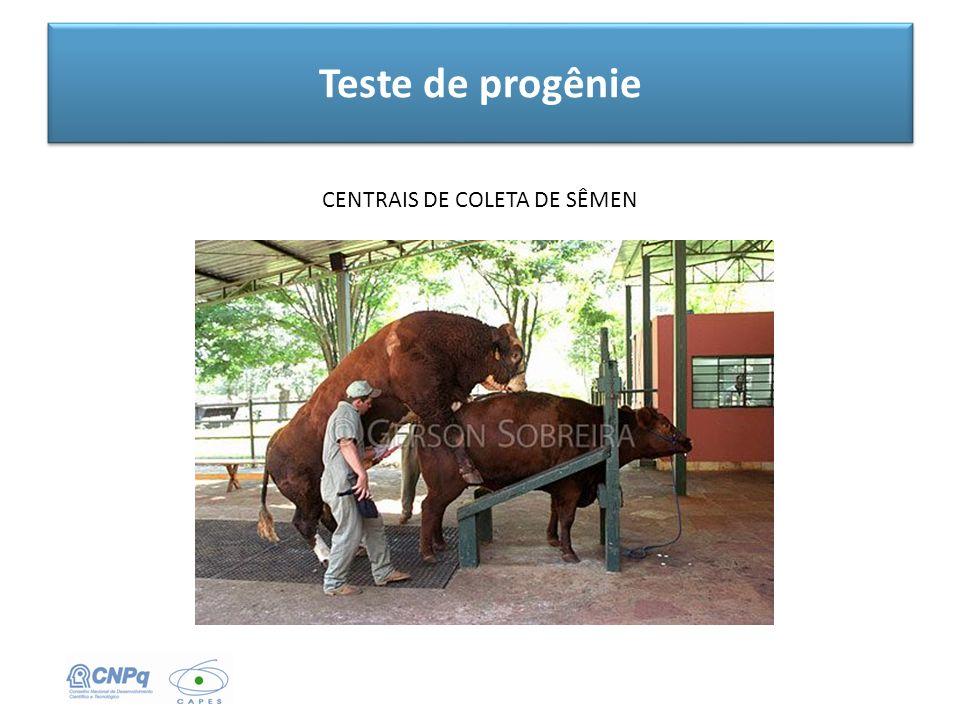 Teste de progênie CENTRAIS DE COLETA DE SÊMEN