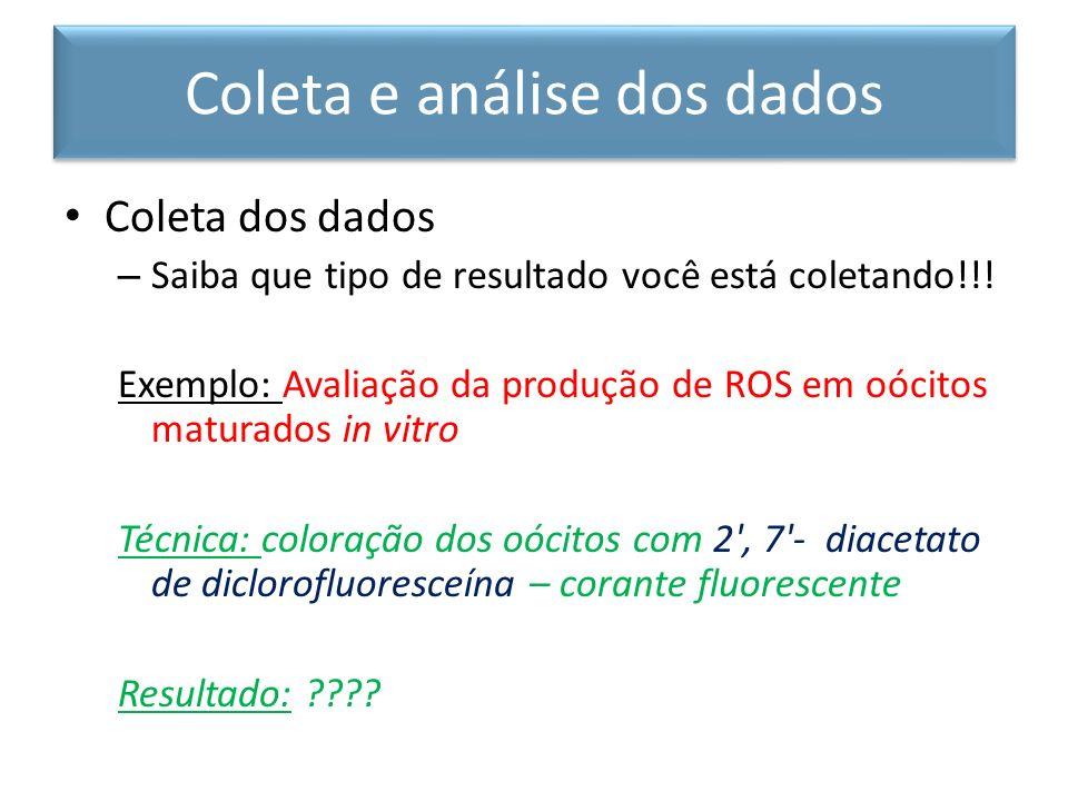 Coleta dos dados – Saiba que tipo de resultado você está coletando!!! Exemplo: Avaliação da produção de ROS em oócitos maturados in vitro Técnica: col