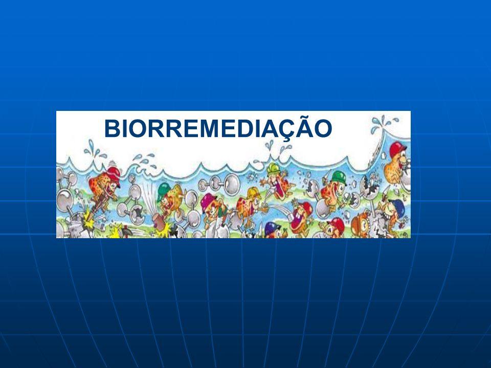 A Biorremediação é um processo no qual organismos vivos, normalmente plantas ou micro-organismos são utilizados TECNOLOGICAMENTE para REMOVER ou REDUZIR poluentes no ambientes.