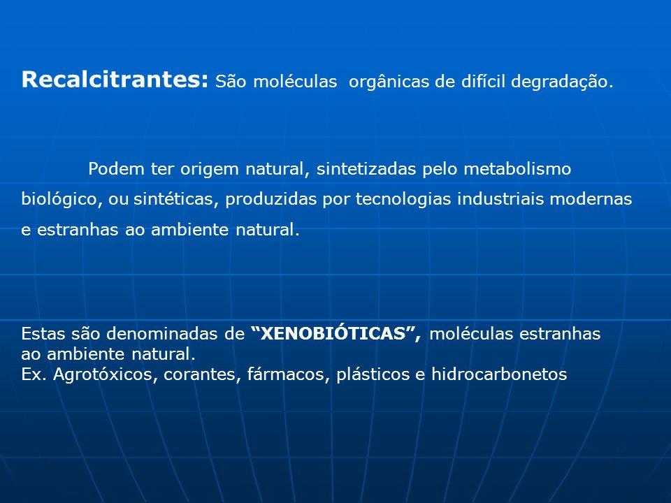 PROCESSO Um composto orgânico quando é oxidado perde elétrons para um aceptor final de elétrons, que é reduzido (ganha elétrons).
