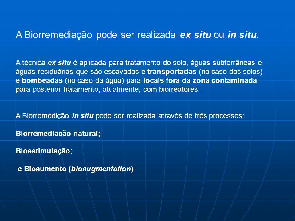 A Biorremediação pode ser realizada ex situ ou in situ.