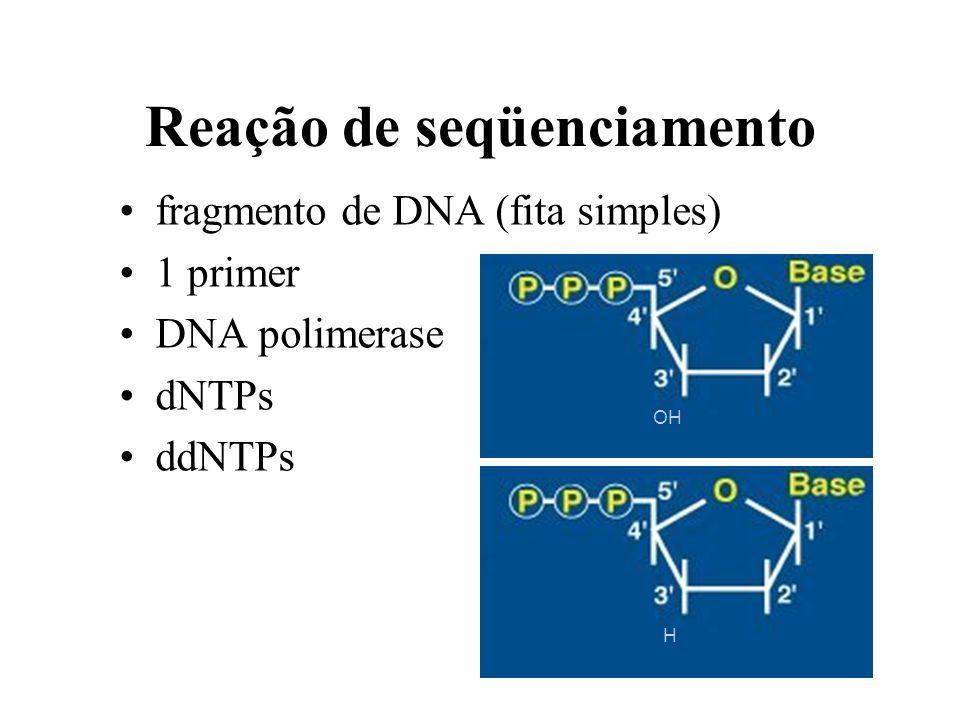 Método de Sanger Reação de seqüenciamento –amplificação linear Eletroforese em gel de acrilamida –em placa –capilar Leitura da seqüencia –manual –auto