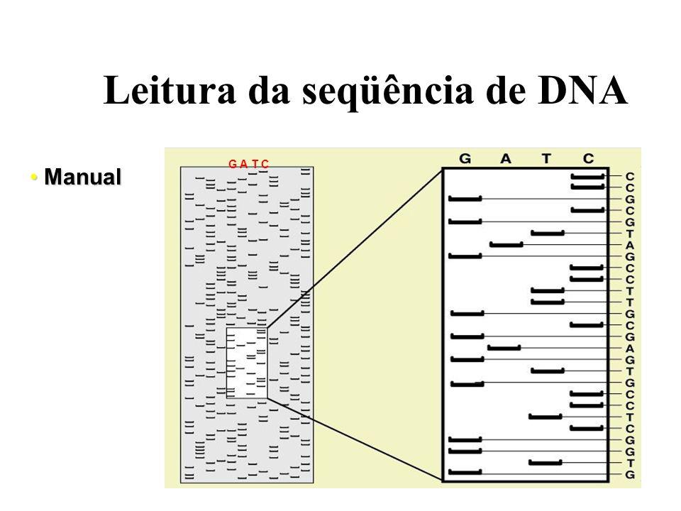 Reação de sequenciamento e marcação do DNA Radioisótopos Leitura das sequências - Manual Leitura das sequências - Automática Fluoresceínas