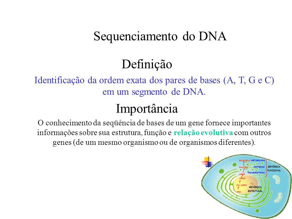 Sequenciamento de DNA em MegaBACE DNA Analysis Systems Prof. Dr. Luciano da Silva Pinto TGTGAACACACGTGTGGATTGG... ls_pinto@hotmail.com