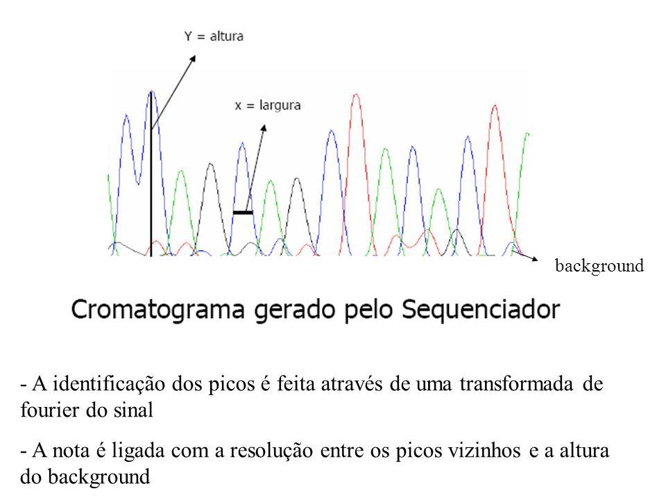 0 0 5 6 7 10 10 9 12 15 20 20 30 30 35 40 41 45 50 56 56 50 40... O programa PHRED lê o chromatograma identificando e dando uma nota para cada base qu