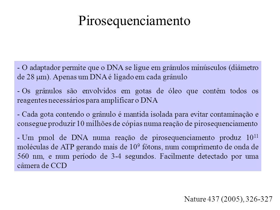 Quebrar em pedaços aleatórios ~2000pb (shotgun) DNA genômico Ligação do adaptador e separação em fita simples Shotgun do genoma inteiro