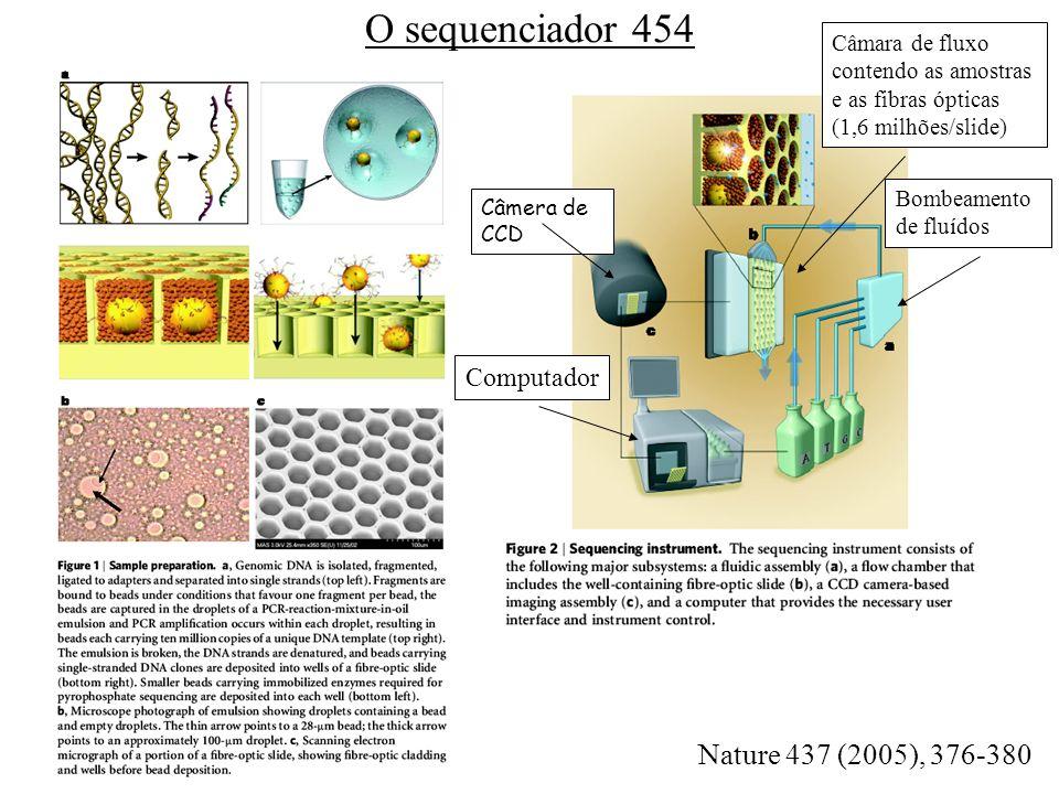 - O adaptador permite que o DNA se ligue em grânulos minúsculos (diâmetro de 28 m). Apenas um DNA é ligado em cada grânulo - Os grânulos são envolvido