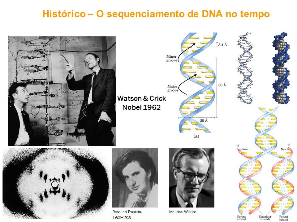 Análise do fluxo da informação celular pela pesquisa genômica