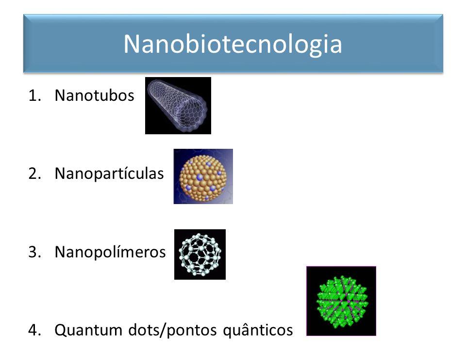 1.Nanotubos 2.Nanopartículas 3.Nanopolímeros 4.Quantum dots/pontos quânticos Nanobiotecnologia