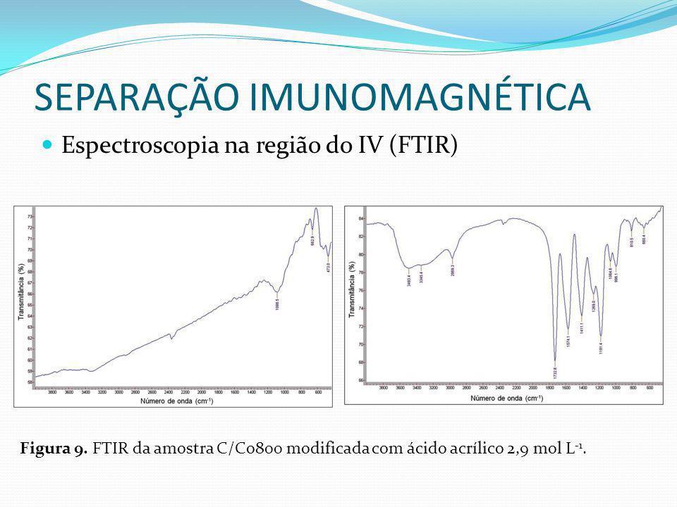 SEPARAÇÃO IMUNOMAGNÉTICA Espectroscopia na região do IV (FTIR) Figura 9. FTIR da amostra C/Co800 modificada com ácido acrílico 2,9 mol L -1.