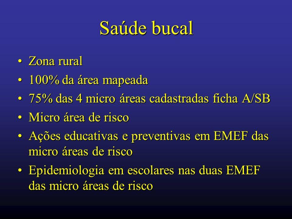 Saúde bucal Zona ruralZona rural 100% da área mapeada100% da área mapeada 75% das 4 micro áreas cadastradas ficha A/SB75% das 4 micro áreas cadastrada