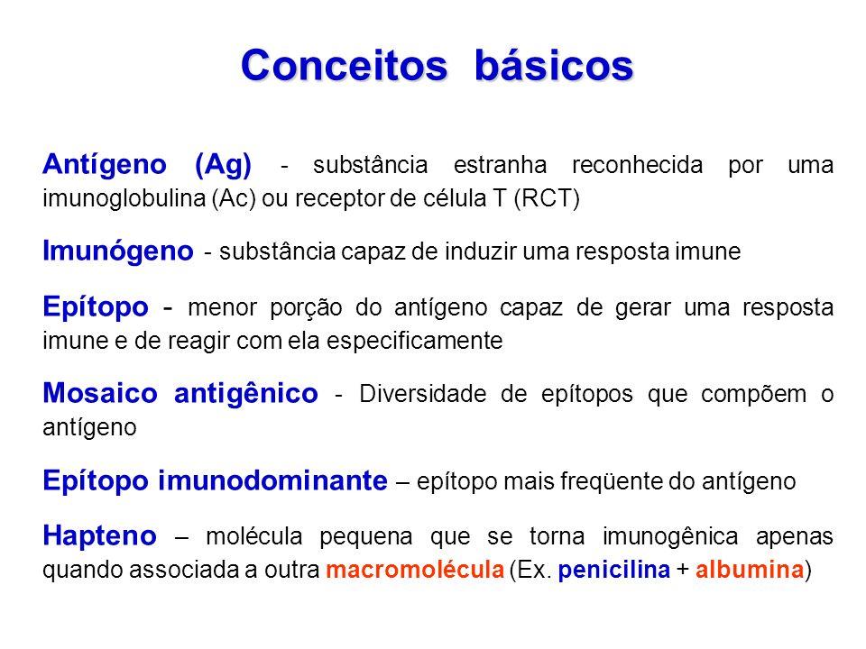 Conceitos básicos Antígeno (Ag) - substância estranha reconhecida por uma imunoglobulina (Ac) ou receptor de célula T (RCT) Imunógeno - substância cap