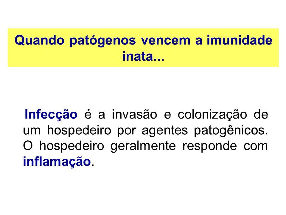 Quando patógenos vencem a imunidade inata... Infecção é a invasão e colonização de um hospedeiro por agentes patogênicos. O hospedeiro geralmente resp