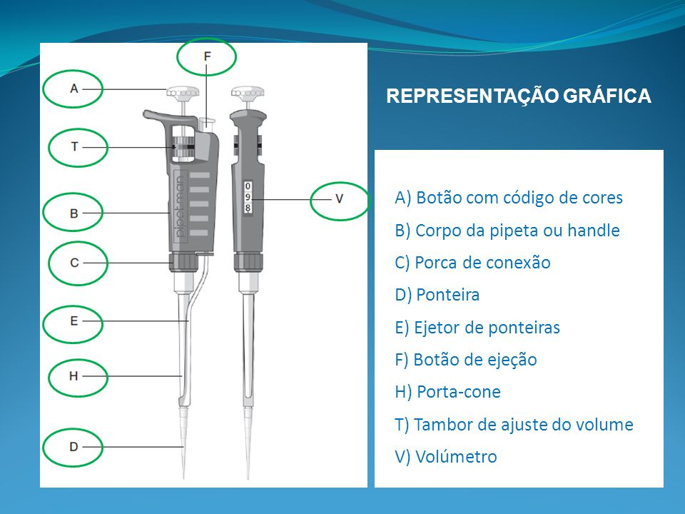A) Botão com código de cores B) Corpo da pipeta ou handle C) Porca de conexão D) Ponteira E) Ejetor de ponteiras F) Botão de ejeção H) Porta-cone T) Tambor de ajuste do volume V) Volúmetro REPRESENTAÇÃO GRÁFICA