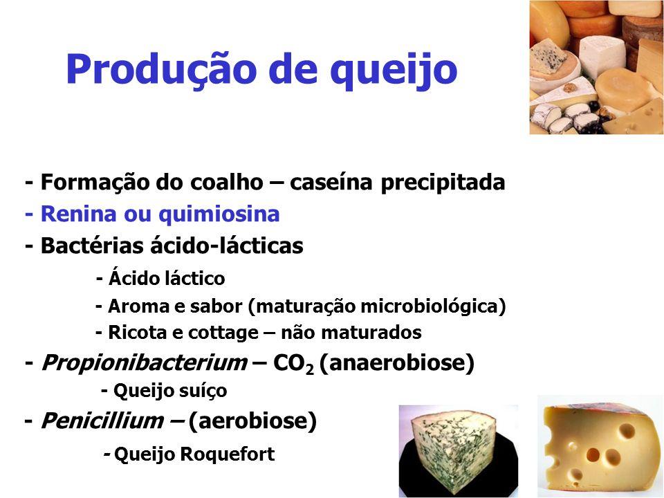 Produção de queijo - Formação do coalho – caseína precipitada - Renina ou quimiosina - Bactérias ácido-lácticas - Ácido láctico - Aroma e sabor (matur