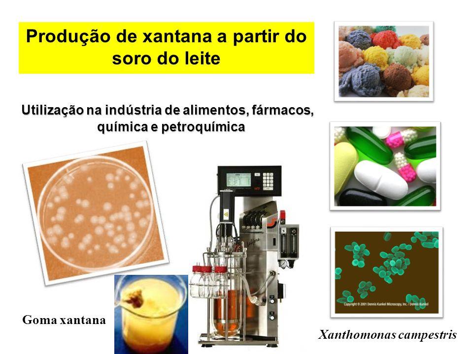 Utilização na indústria de alimentos, fármacos, química e petroquímica Utilização na indústria de alimentos, fármacos, química e petroquímica Xanthomo