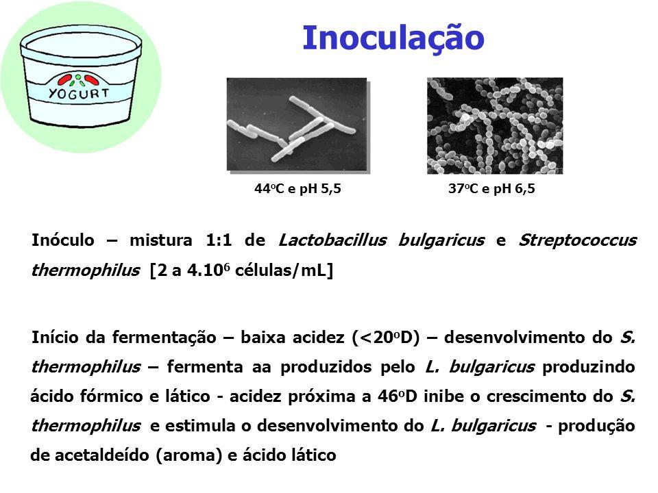 Inoculação Inóculo – mistura 1:1 de Lactobacillus bulgaricus e Streptococcus thermophilus [2 a 4.10 6 células/mL] Início da fermentação – baixa acidez