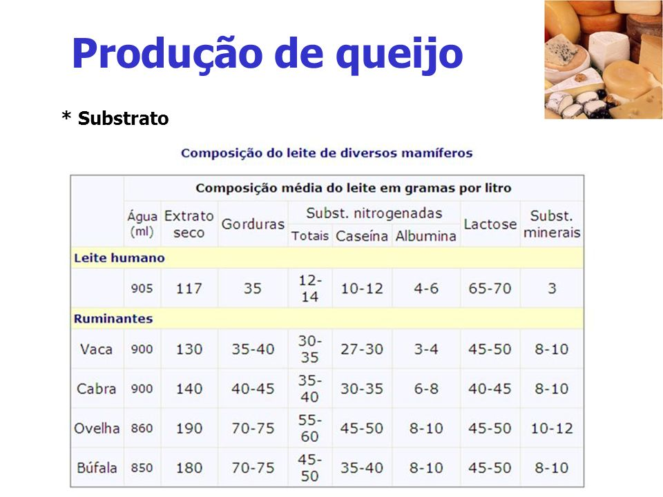 Produção de queijo - Formação do coalho – caseína precipitada - Renina ou quimiosina - Bactérias ácido-lácticas - Ácido láctico - Aroma e sabor (maturação microbiológica) - Ricota e cottage – não maturados - Propionibacterium – CO 2 (anaerobiose) - Queijo suíço - Penicillium – (aerobiose) - Queijo Roquefort