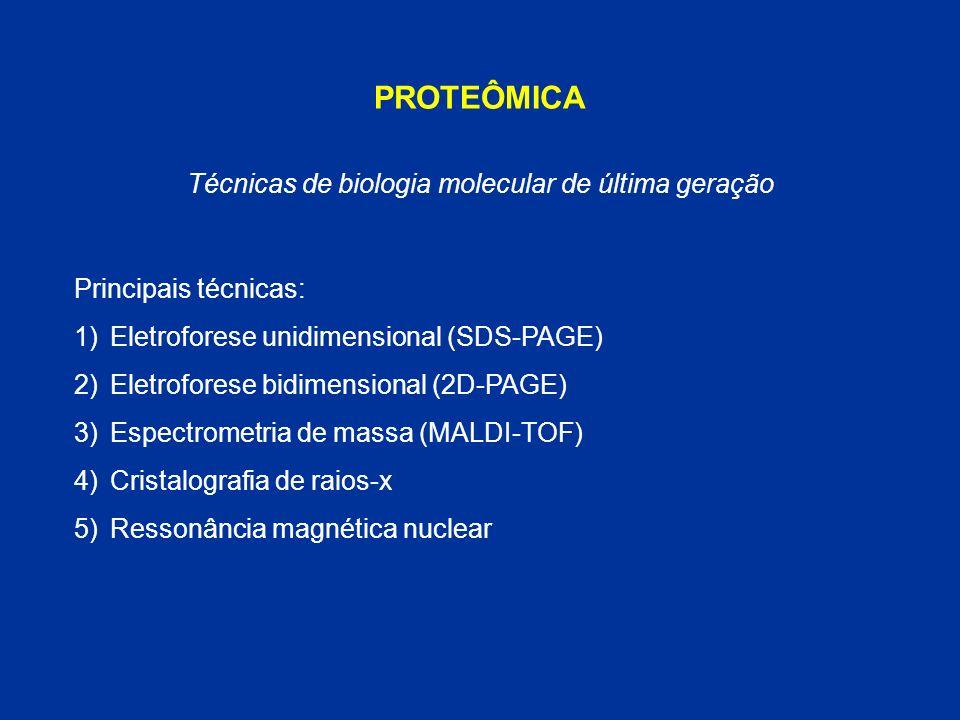 PROTEÔMICA Principais técnicas: 1)Eletroforese unidimensional (SDS-PAGE) 2)Eletroforese bidimensional (2D-PAGE) 3)Espectrometria de massa (MALDI-TOF)